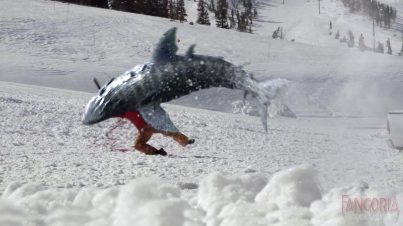 avalanche-sharks