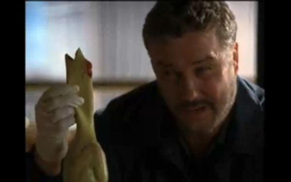 cross csi 04 - [Eu Assisti] O crossover entre Two And a Half Men e CSI... e adorei!